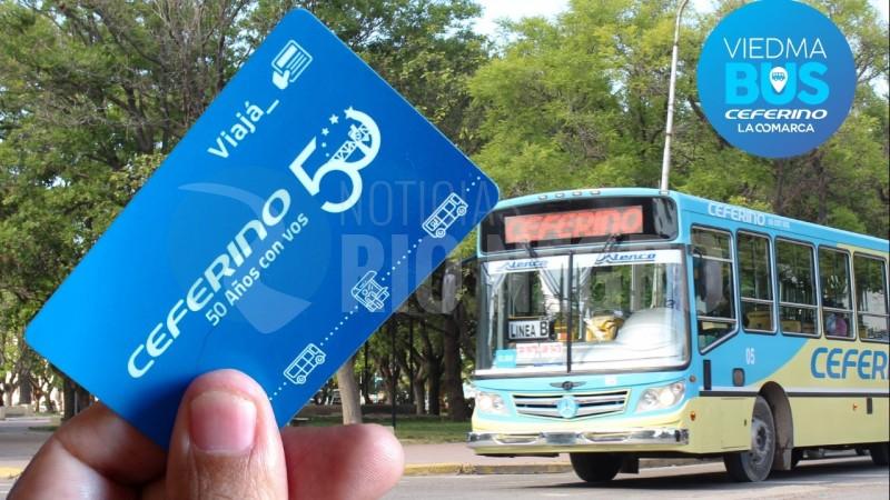 empresa ceferino, viedma bus