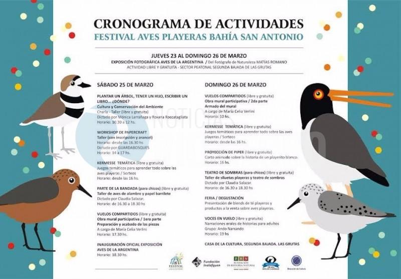 Las Grutas, festival aves playeras