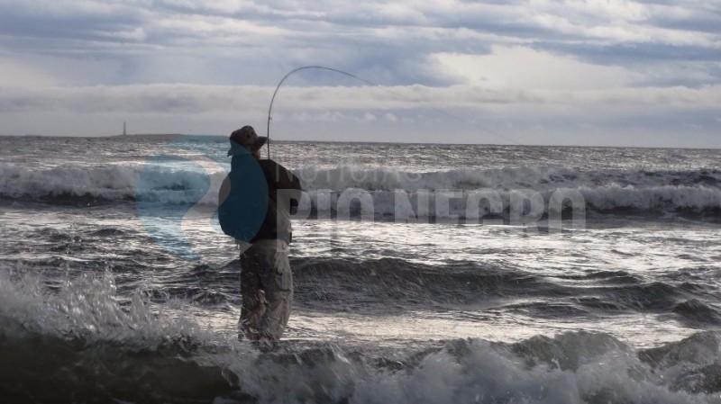 pesca con mosca playas doradas