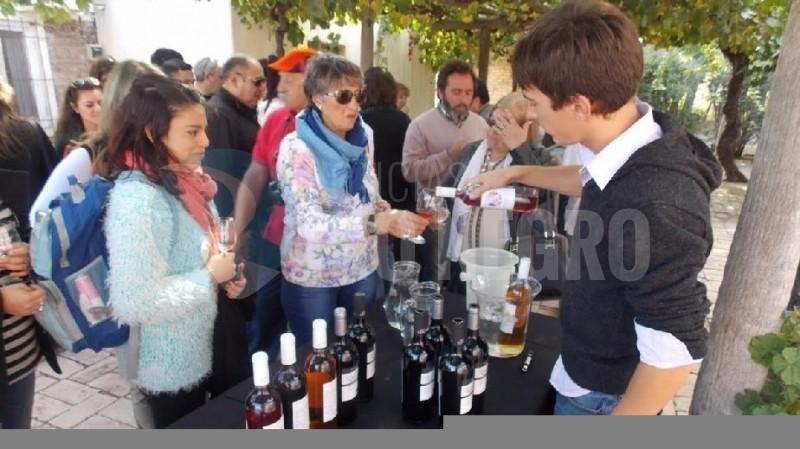 promocion turistica vinos