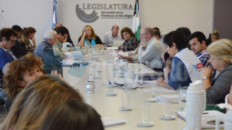 comisión asuntos constitucionales