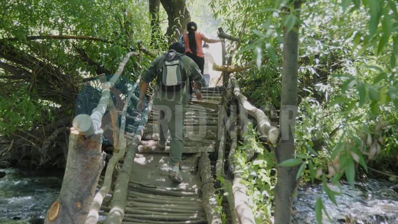 puente ñireco