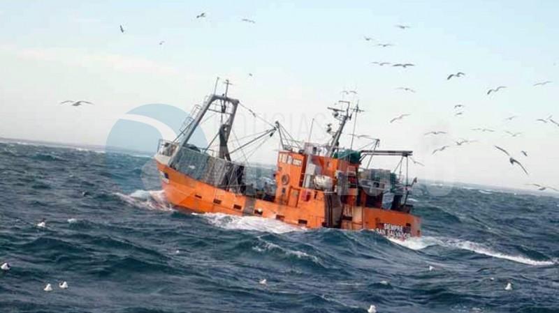 pesquero, barco