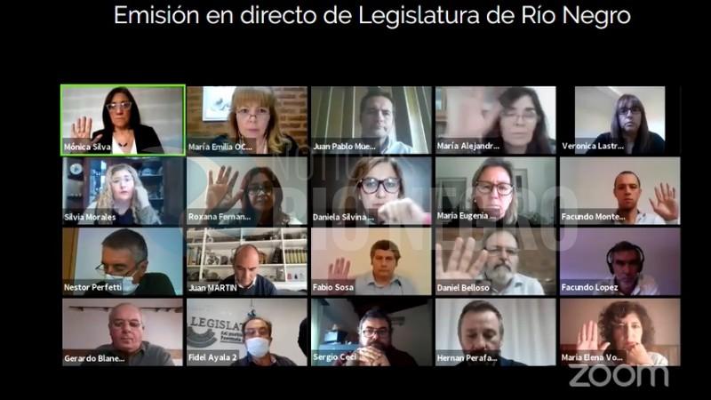 legislatura, comision de cultura, videoconferencia