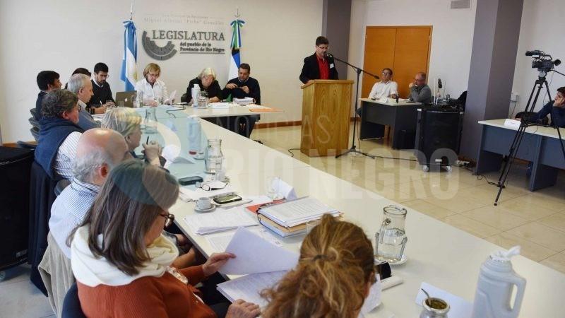 legislatura, comision de derechos humanos