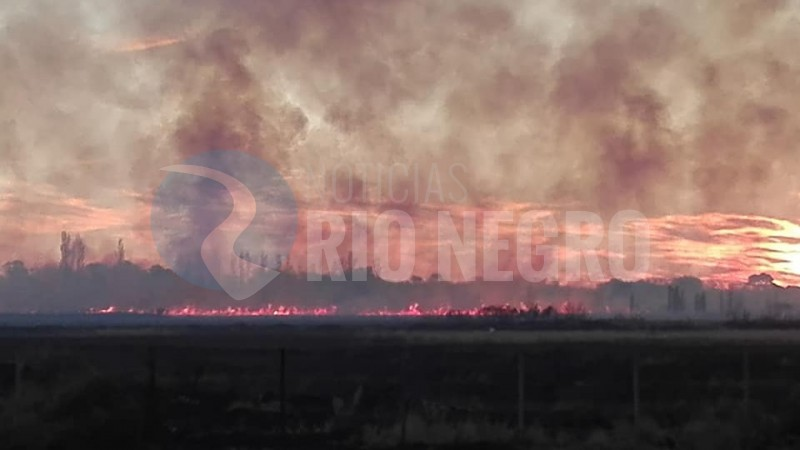 viedma, incendio, barrio norte