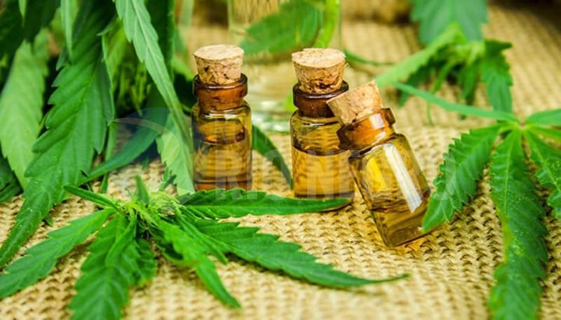 cannabis medicinal, unrn, encuentro