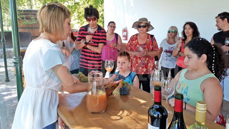turismo, general roca, cata de vinos