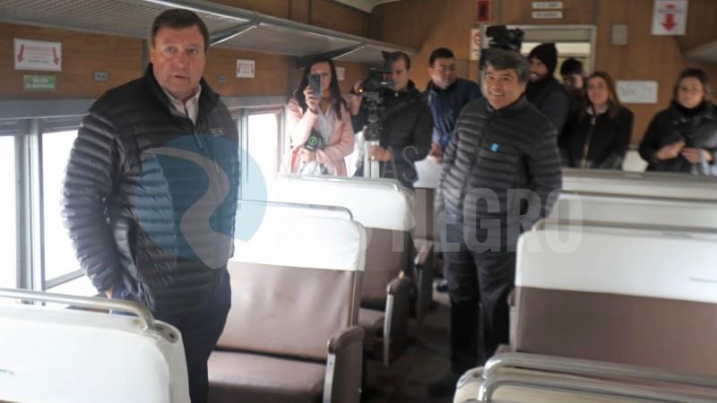 Weretilneck, tren patagonico