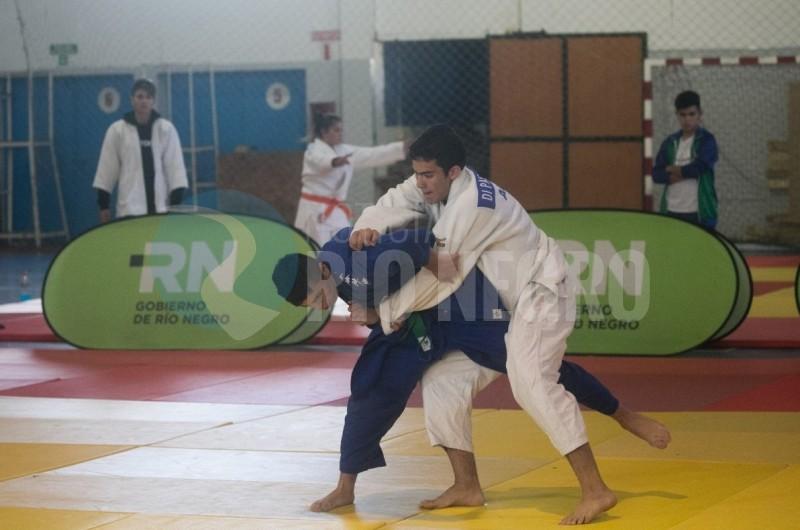 juegos araucania judo