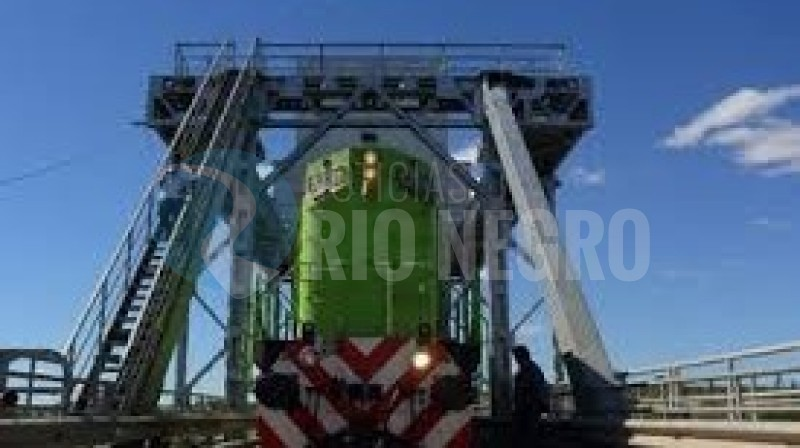 puente ferrocarretero, tren patagonico