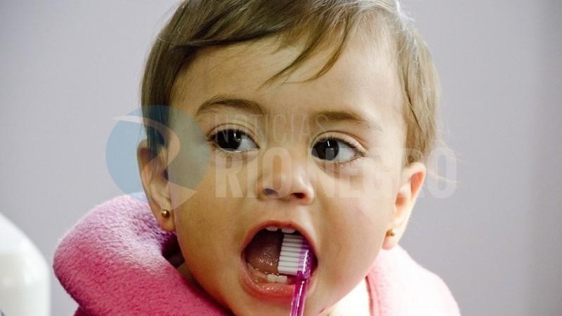 nena, dientes, salud bucal