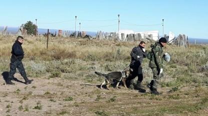 policia, catriel, PERROS