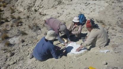 restos fosiles, comallo