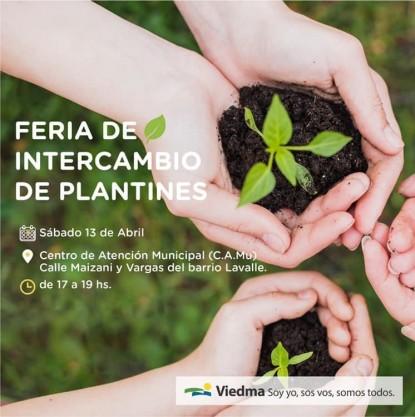 plantines
