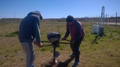 trabajos forestacion