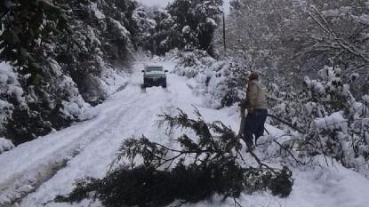 temporal, nevada