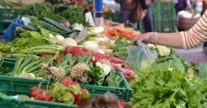 alimentación para una salud integral
