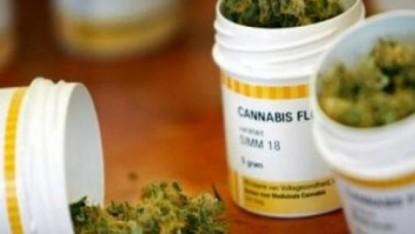marihuana medicinal, cannabis