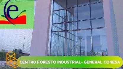 centro foresto industrial conesa