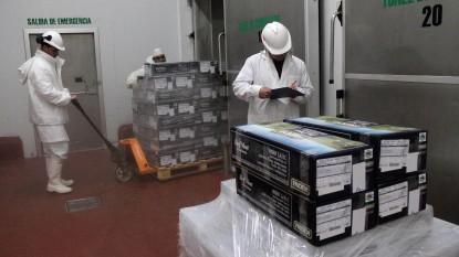 fridevi, carne, JAPON, exportacion