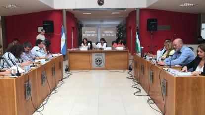 Concejo Deliberante, viedma, sesion