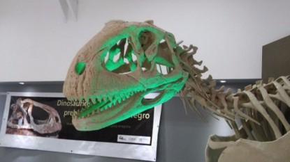 museo, dinosaurio