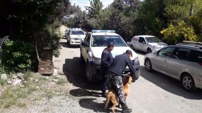 policia, PERROS, busqueda