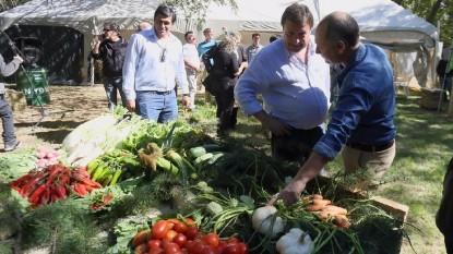 weretilneck verduras