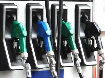 combustible patagónico