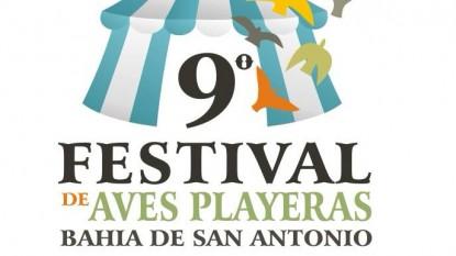 festival aves playeras