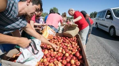 PROTESTA, productores, manzanas