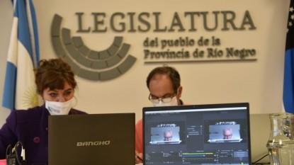 legislatura, comisiones