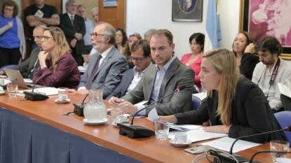 MARIA EMILIA SORIA, PLENARIO ETICA PUBLICA