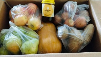 frutas y verduras, modulos