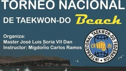 taekwon do beach