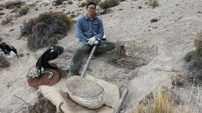 turismo paleontológico