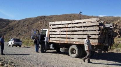 camion, decomiso, madera