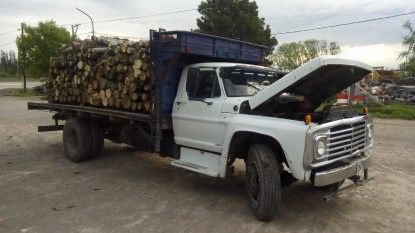 camion, decomiso, arboles, alamos