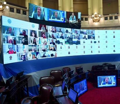 senado, sesion virtual, Weretilneck