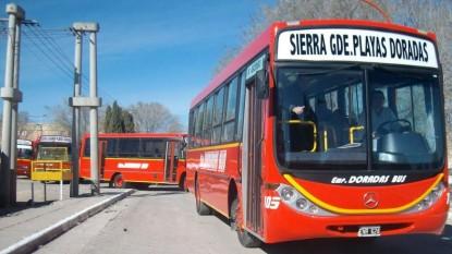 doradas bus, COLECTIVO