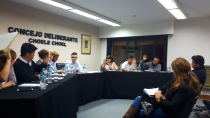 choele choel, Concejo Deliberante