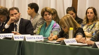 Mabel Dell Orfano, Consejo Federal de Drogas