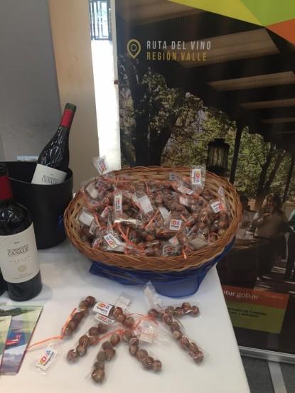 turismo, vino