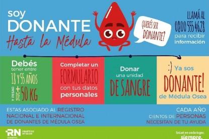 medula, donante