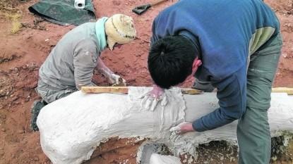 universidad nacional de río negro, paleontologos