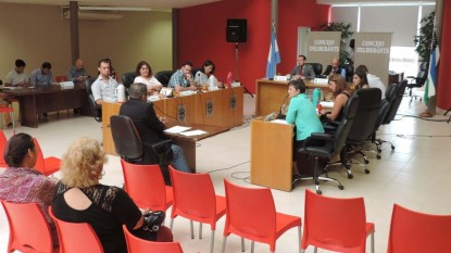 Concejo Deliberante, viedma, Defensora del Pueblo