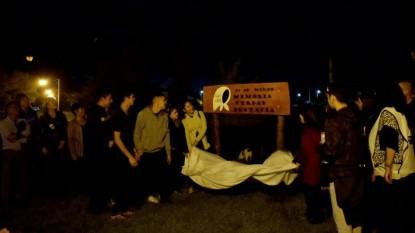 Ingeniero huergo, desaparecidos, cartel