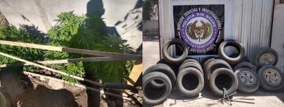 marihuana, cubiertas