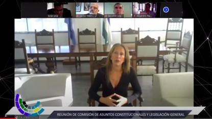 legislatura, comisión de Asuntos Constitucionales, liliana piccinini